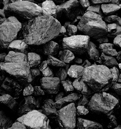 Skład węgla